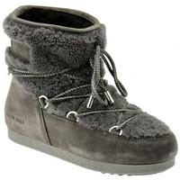 Sapatos Mulher Botas de neve Moon Boot