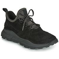 Sapatos Homem Sapatilhas Timberland BROOKLYN LACE OXFORD Preto