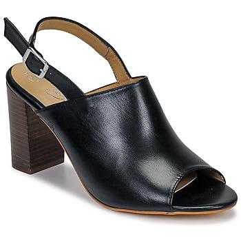 Sapatos Mulher Sandálias Betty London JIKOTEGE Preto