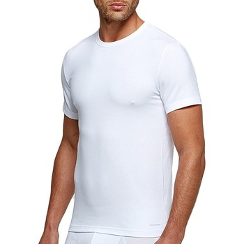 Textil Homem T-Shirt mangas curtas Impetus 1353898 001 Branco