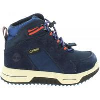 Sapatos Criança Botas baixas Timberland A1UD8 CITY Azul