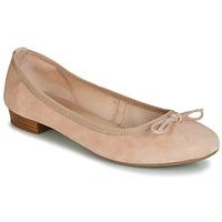 Sapatos Mulher Sabrinas André CINDY Cru