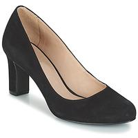 Sapatos Mulher Escarpim André CINTIA Preto
