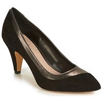 Sapatos Mulher Escarpim André CHAHUTEUSE Preto