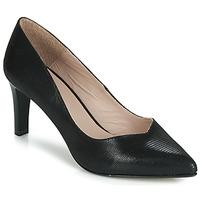 Sapatos Mulher Escarpim André CHICA Preto