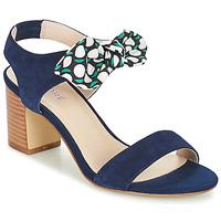 Sapatos Mulher Sandálias André SUPENS Azul