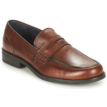 Sapatos Homem Mocassins André KOLL Castanho