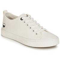 Sapatos Homem Sapatilhas André DIVING Branco
