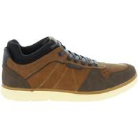Sapatos Homem Sapatilhas MTNG 84138 Marr?n