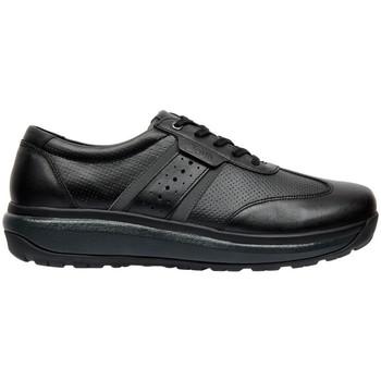 Sapatos Homem Sapatilhas Joya DAVID M BLACK