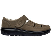 Sapatos Homem Sandálias Joya FISHERMAN S BROWN