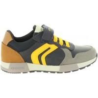 Sapatos Criança Sapatos & Richelieu Geox J846NC 0FUAU J ALFIER Azul