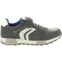 Sapatos Criança Sapatos & Richelieu Geox J846NC 0FUAU J ALFIER Gris