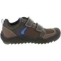 Sapatos Criança Multi-desportos Geox J8434A 05054 J ARTACH Marrón