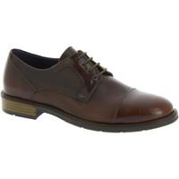 Sapatos Homem Sapatos Raymont 625 BROWN marrone