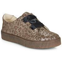 Sapatos Rapariga Sapatilhas Catimini CAVANILLE Leopardo