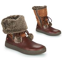 Sapatos Rapariga Botas baixas GBB NOUSTIK Castanho