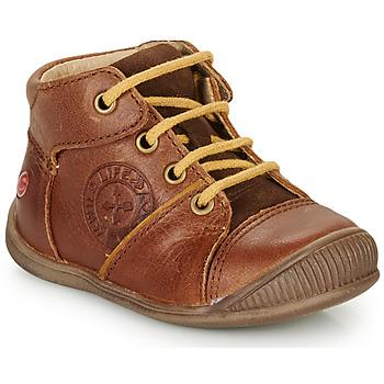 Sapatos Rapaz Botas baixas GBB OULOU Castanho / Conhaque