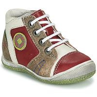 Sapatos Rapaz Botas baixas GBB MONTGOMERY Vermelho