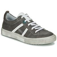 Sapatos Rapaz Sapatilhas Achile HOLMAN Antracite