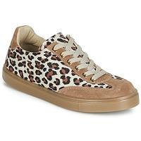 Sapatos Mulher Sapatilhas André ARDOISE Leopardo
