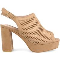 Sapatos Mulher Sandálias Clowse 9R82 Camel