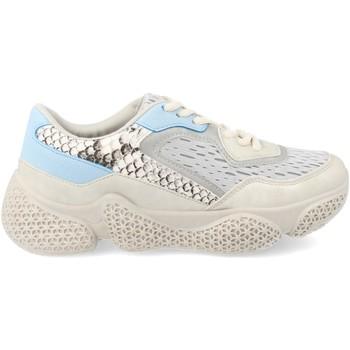 Sapatos Mulher Sapatilhas Ainy G-225 Gris