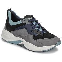 Sapatos Mulher Sapatilhas Timberland DELPHIVILLE LEATHER SNEAK Preto