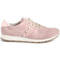 Sapatos Mulher Sapatilhas Imac 307081 Rosa