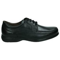 Sapatos Homem Sapatos & Richelieu Nuper Sapatos  1964 cavaleiro negro Noir
