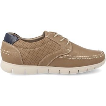 Sapatos Homem Sapatilhas V&d A809 Taupe