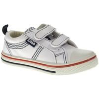 Sapatos Rapaz Sapatilhas Lois 60024 branco
