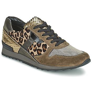 Sapatos Mulher Sapatilhas Kennel + Schmenger LIZAN Camel