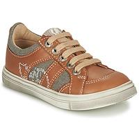 Sapatos Rapaz Sapatilhas GBB PALMYRE Conhaque