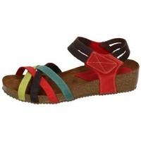Sapatos Mulher Sandálias Interbios  Multicolor