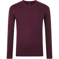 Textil Homem camisolas Sols GLORY SWEATER MEN violeta