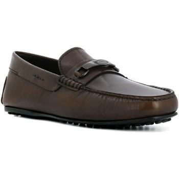 Sapatos Homem Mocassins Tod's XXM0LR0AJ20D9C Cioccolato
