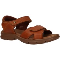 Sapatos Homem Sandálias Panama Jack SANDERS C10 NAPA GRASS CUERO Beige