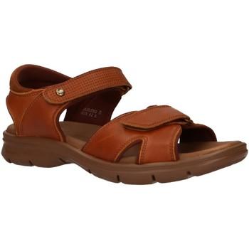 Sapatos Homem Sandálias Panama Jack SANDERS C10 Beige