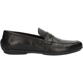 Sapatos Homem Mocassins Nicol Sadler M01 Preto