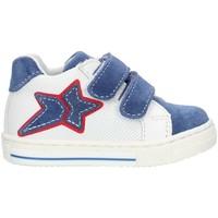 Sapatos Rapariga Sapatilhas de cano-alto Balocchi 493265 Azul