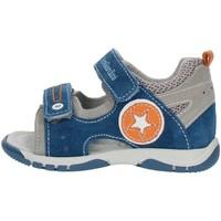 Sapatos Rapaz Sandálias Nero Giardini P823141M Multicolor