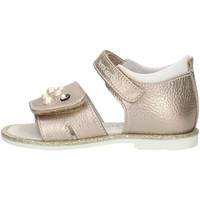 Sapatos Rapariga Sandálias Nero Giardini P820340F Castanho