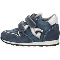 Sapatos Rapaz Sapatilhas Nero Giardini P724190M Azul