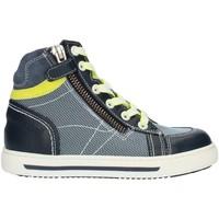 Sapatos Rapaz Sapatilhas de cano-alto Nero Giardini P833013M Azul