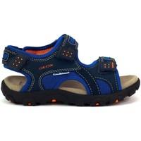Sapatos Criança Sandálias desportivas Geox JR Strada Azul marinho