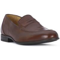 Sapatos Homem Mocassins Ocland NILO SIENA Marrone