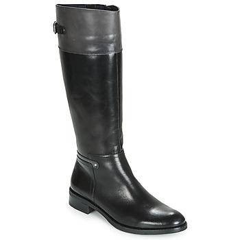 Sapatos Mulher Botas Dorking TIERRA Preto / Cinza