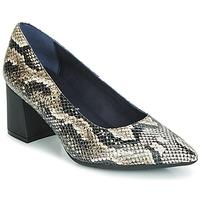 Sapatos Mulher Escarpim Dorking SOFI Réptil