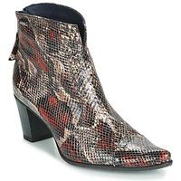 Sapatos Mulher Botins Dorking GRANADA Réptil